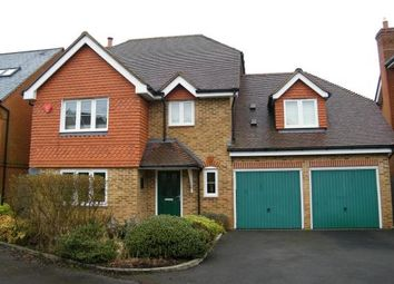 Thumbnail 4 bed detached house to rent in Kirtle Drive, Four Marks, Alton
