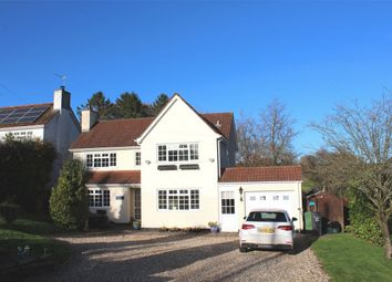 Thumbnail 3 bed detached house to rent in Bishopswood, Chard
