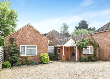 Thumbnail 6 bed detached bungalow for sale in Beehive Lane, Binfield, Bracknell, Berkshire