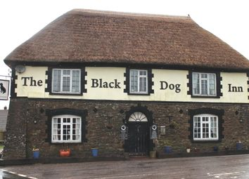 Thumbnail Pub/bar for sale in Black Dog, Crediton