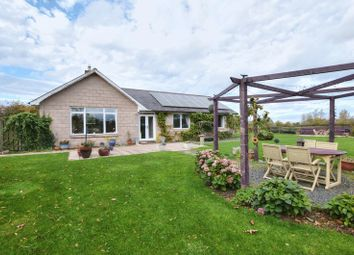Thumbnail 3 bed detached house for sale in South Road, Belford