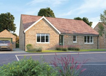 Thumbnail 3 bed detached bungalow for sale in The Clarendon At Oak Tree Park, Stancliffe Homes, Shireoaks, Worksop, Nottinghamshire