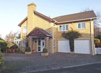 Thumbnail 4 bed detached house for sale in Anthony Court, Stanley, Durham