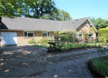 Thumbnail 4 bed detached bungalow for sale in Chapel Gardens, Lindford