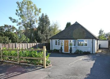 Thumbnail 3 bed detached bungalow for sale in North Avenue, Farnham, Surrey