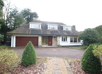 Thumbnail 3 bed bungalow to rent in Hockering Road, Woking