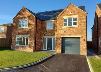 Thumbnail 4 bed detached house for sale in Hall Road, Outwell, Wisbech