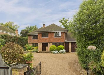 Thumbnail 5 bed detached house to rent in Ashley Rise, Walton On Thames