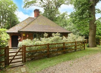 Thumbnail 3 bed detached bungalow to rent in Forest Road, Winkfield Row