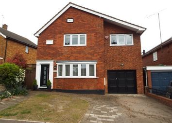 Thumbnail 4 bed detached house to rent in Whitehill Road, Hitchin