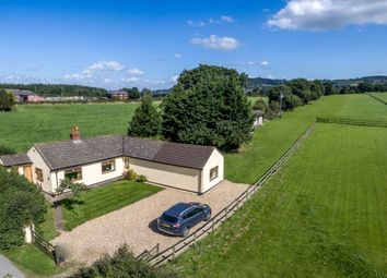 Thumbnail 3 bed detached bungalow for sale in Hapsford Lane, Helsby, Frodsham