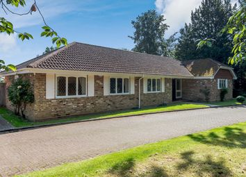 Thumbnail 4 bed detached bungalow for sale in Mcalmont Ridge, Godalming