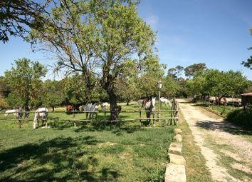 Thumbnail 8 bed equestrian property for sale in Llubi, Llubí, Majorca, Balearic Islands, Spain