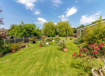 Thumbnail 4 bed bungalow for sale in Hullbridge, Hockley, Essex