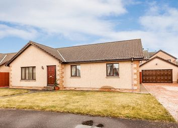 Thumbnail 3 bed bungalow for sale in Charleton Park, Montrose
