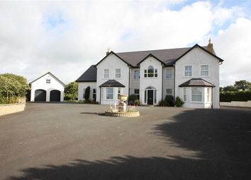 Thumbnail 5 bed detached house for sale in Ballynahinch Road, Dromore, Down