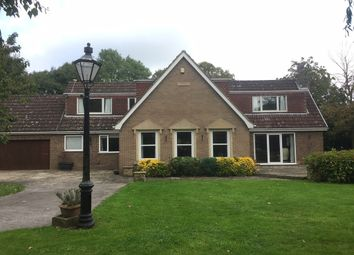 Thumbnail 4 bed detached house to rent in Newland, Goole