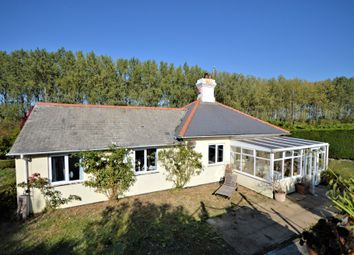 Thumbnail Detached bungalow for sale in Main Road, Holkham, Wells-Next-The-Sea