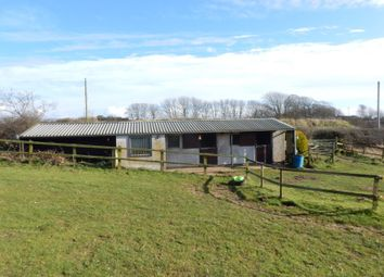 Thumbnail Equestrian property for sale in Paddock Land & Stables, Aikshaw, Wigton, Cumbria
