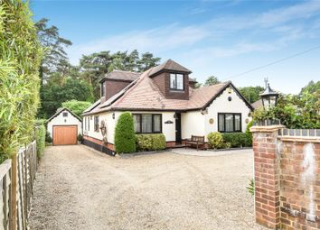Thumbnail 4 bed detached bungalow for sale in Soldiers Rise, Finchampstead, Berkshire