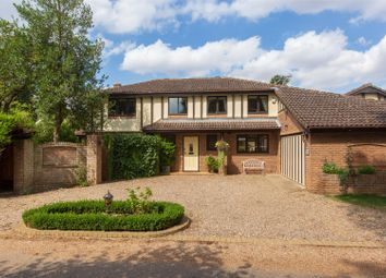 Thumbnail 5 bed detached house for sale in East Avenue, Brundall, Norwich