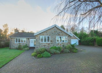 Thumbnail 4 bed detached bungalow for sale in Thornlea, Hepscott, Morpeth