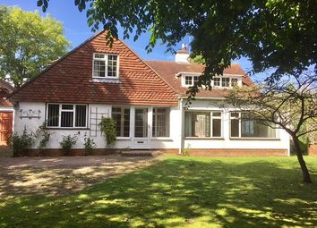 Thumbnail 4 bed property to rent in Lewes Road, Ditchling, Hassocks