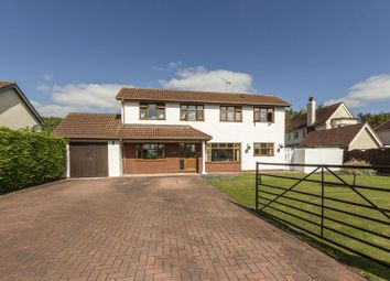 Thumbnail 4 bedroom detached house for sale in Tennyson Avenue, Llanwern, Newport