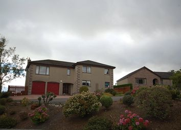 Thumbnail 5 bed detached house to rent in West Park, Inverbervie