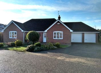 Thumbnail 4 bedroom detached bungalow to rent in Mill Orchard, Pulham Market, Diss