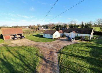 Thumbnail 5 bed detached bungalow for sale in Harts Lane, Ardleigh, Colchester, Essex