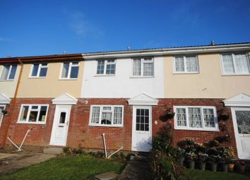 Thumbnail 2 bedroom terraced house for sale in Hodges Walk, Torrington