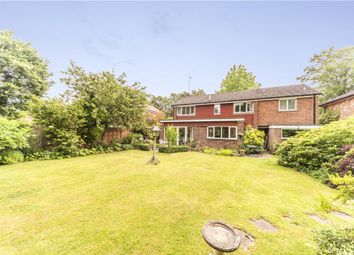 Thumbnail 4 bedroom detached house for sale in Bramley Grove, Crowthorne, Berkshire
