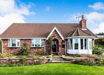 Thumbnail 3 bed bungalow to rent in Ruston Parva, Driffield
