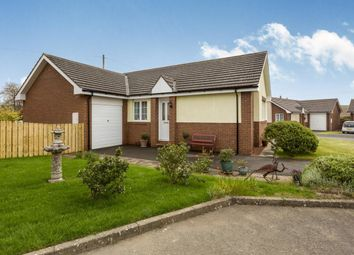 Thumbnail 3 bedroom bungalow for sale in Westview, Embleton, Alnwick