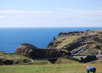 Castle View, Tintagel PL34