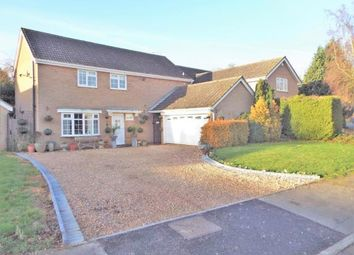 Thumbnail 4 bed detached house for sale in Harewood Close, Langham, Rutland