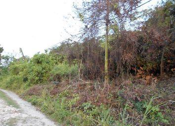 Thumbnail Land for sale in St Anns Bay, Saint Ann, Jamaica