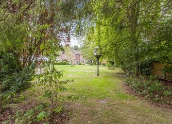 Thumbnail 4 bed semi-detached house for sale in Saham Toney, Thetford, Norfolk