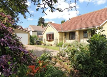 Thumbnail 5 bed bungalow to rent in Court View, Wick, Bristol