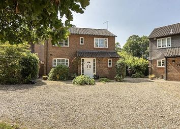 Thumbnail Detached house for sale in Kingfisher Close, Wheathampstead, St.Albans