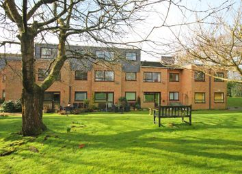 1 bed flat to let in Pennington