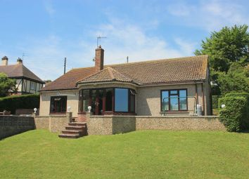 Thumbnail 4 bedroom detached bungalow for sale in Barline, Beer, Seaton