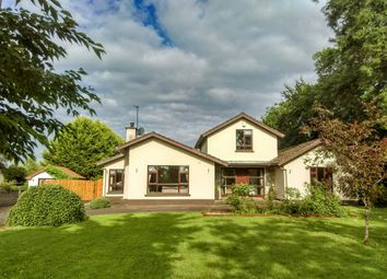 Thumbnail 4 bed detached house for sale in Clooncommons, Castleconnell, Limerick