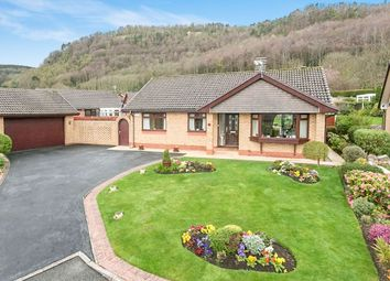 Thumbnail 3 bed bungalow for sale in Lon Glyndwr, Abergele