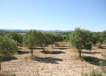 Thumbnail 3 bed property for sale in Languedoc-Roussillon, Hérault, Pezenas