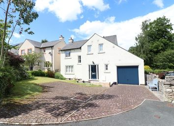 Thumbnail 4 bed detached house for sale in Edenfold, Bolton, Appleby-In-Westmorland