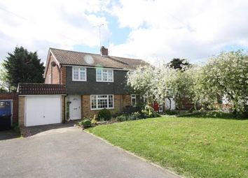Thumbnail 3 bed semi-detached house for sale in Dorset Road, Maldon