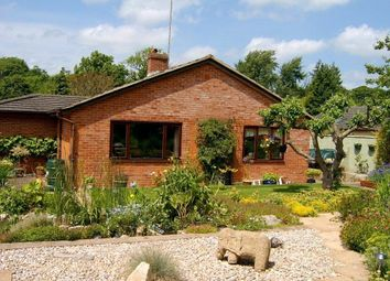 Thumbnail 4 bed detached house to rent in Lovell Close, Thruxton, Andover