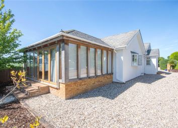 Thumbnail 1 bed bungalow for sale in Feathers Hill, Hatfield Broad Oak, Essex